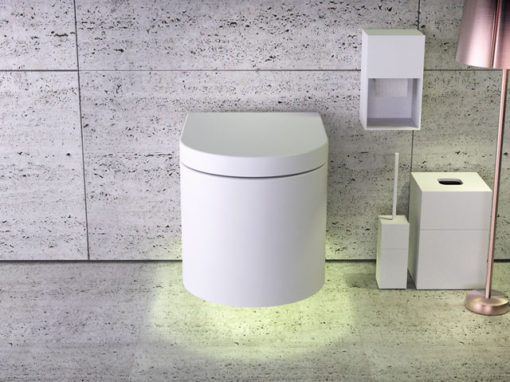 Moon wallhung rimless WC